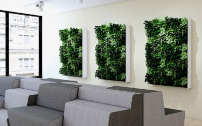 Bringing the Outdoors in with Living Walls